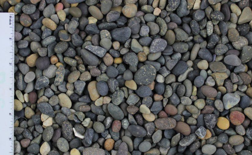 La Paz .25 .5 825x510 - La Paz Pebble