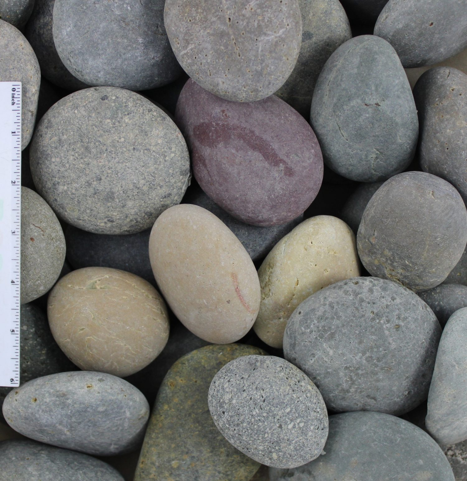Mixed Beach Pebbles 2″-3″