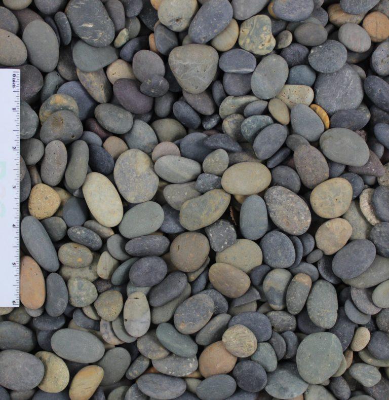 Mixed Beach Buttons e1578357089454 - Mixed Beach Buttons