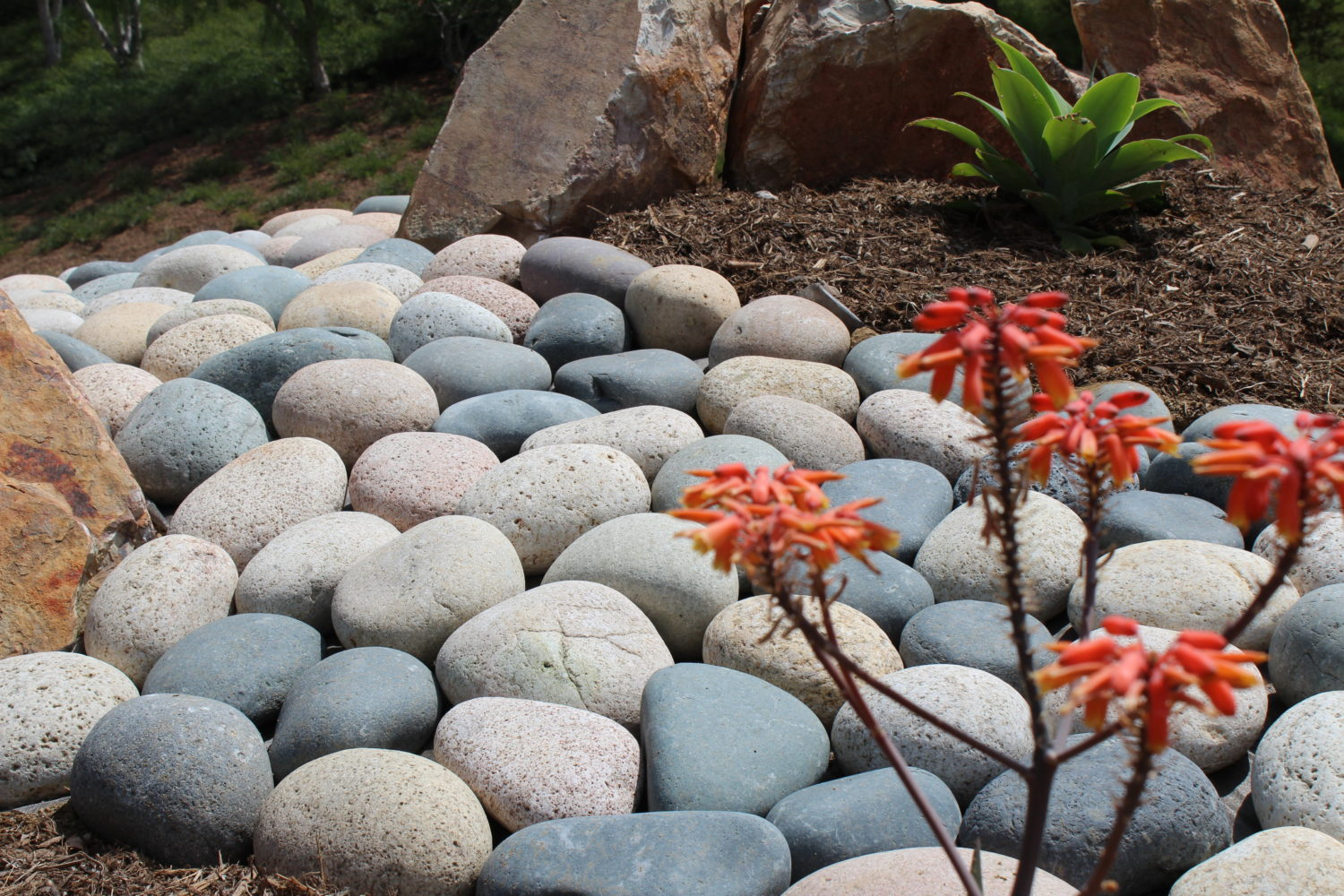 Mixed Beach Pebbles – Pineapple