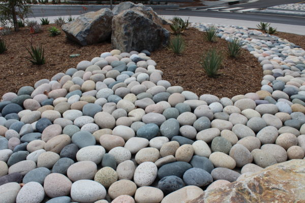 mixed Beach Pineapple 11 e1578356462119 - Mixed Beach Pebbles - Pineapple