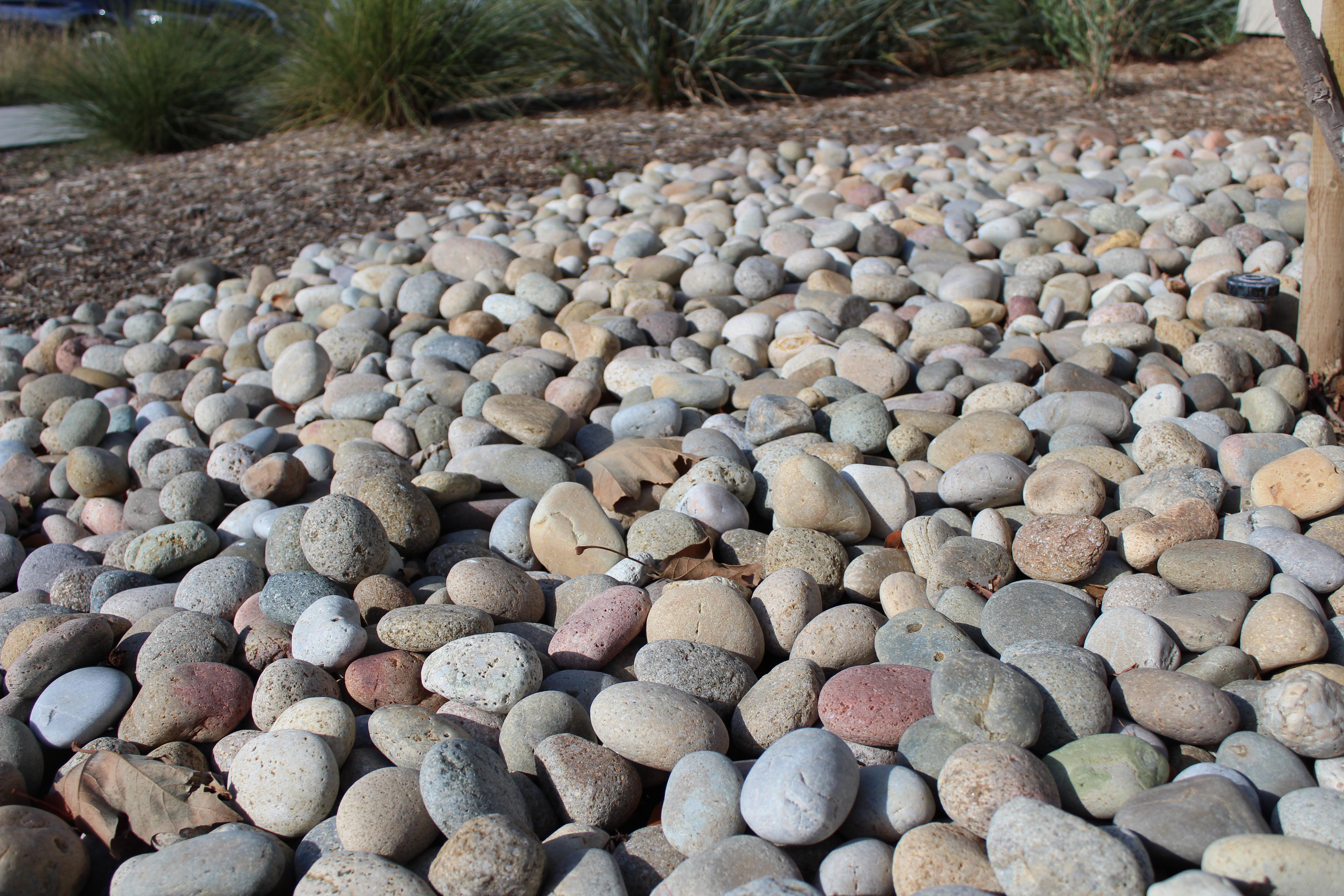 Buff Mexican Beach Pebble landscape rock