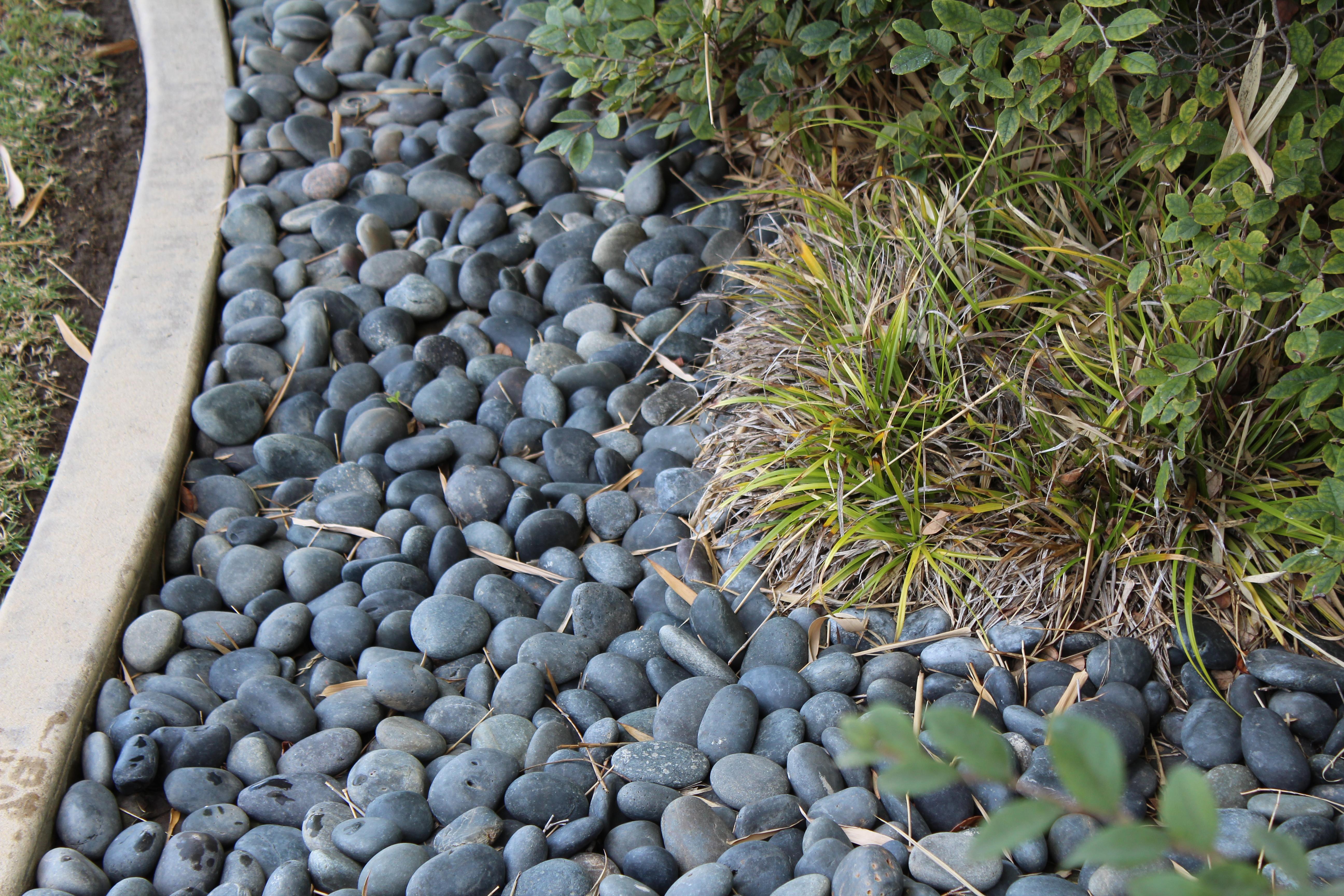 Black Mexican Beach Pebble landscape rock