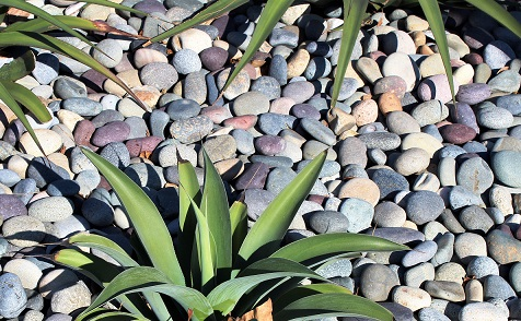Mixed Beach Pebbles 1-2