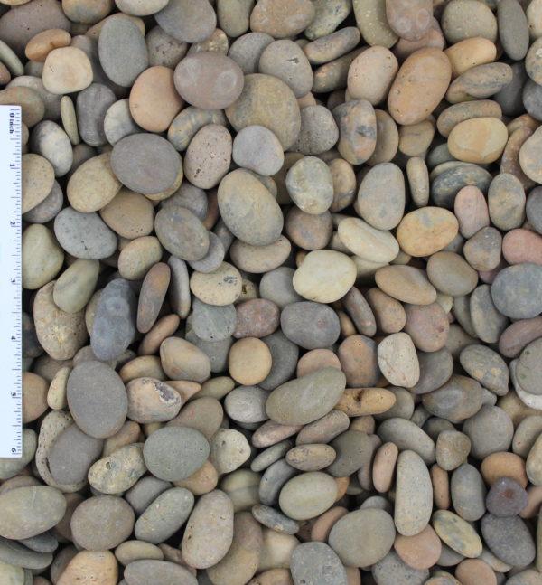 Buff Beach Button e1553617626836 - Buff Beach Pebble Buttons