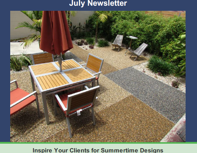 WSSJulyNews1 656x510 - Newsletter July 2019