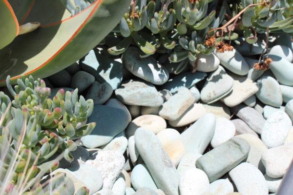 "Aqua Pebble 1 - Aqua Pebble 1 1/2""-2 1/2"""