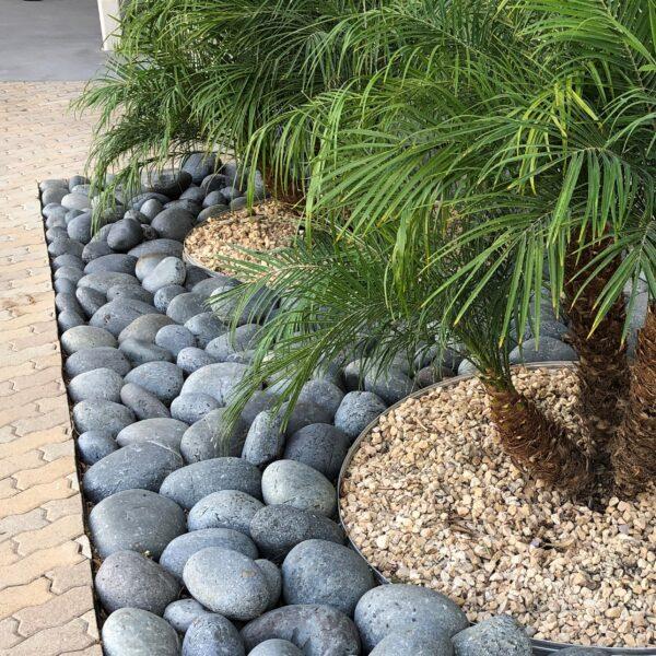 Black Pineapples 5 - Black Beach Pebble - Pineapple
