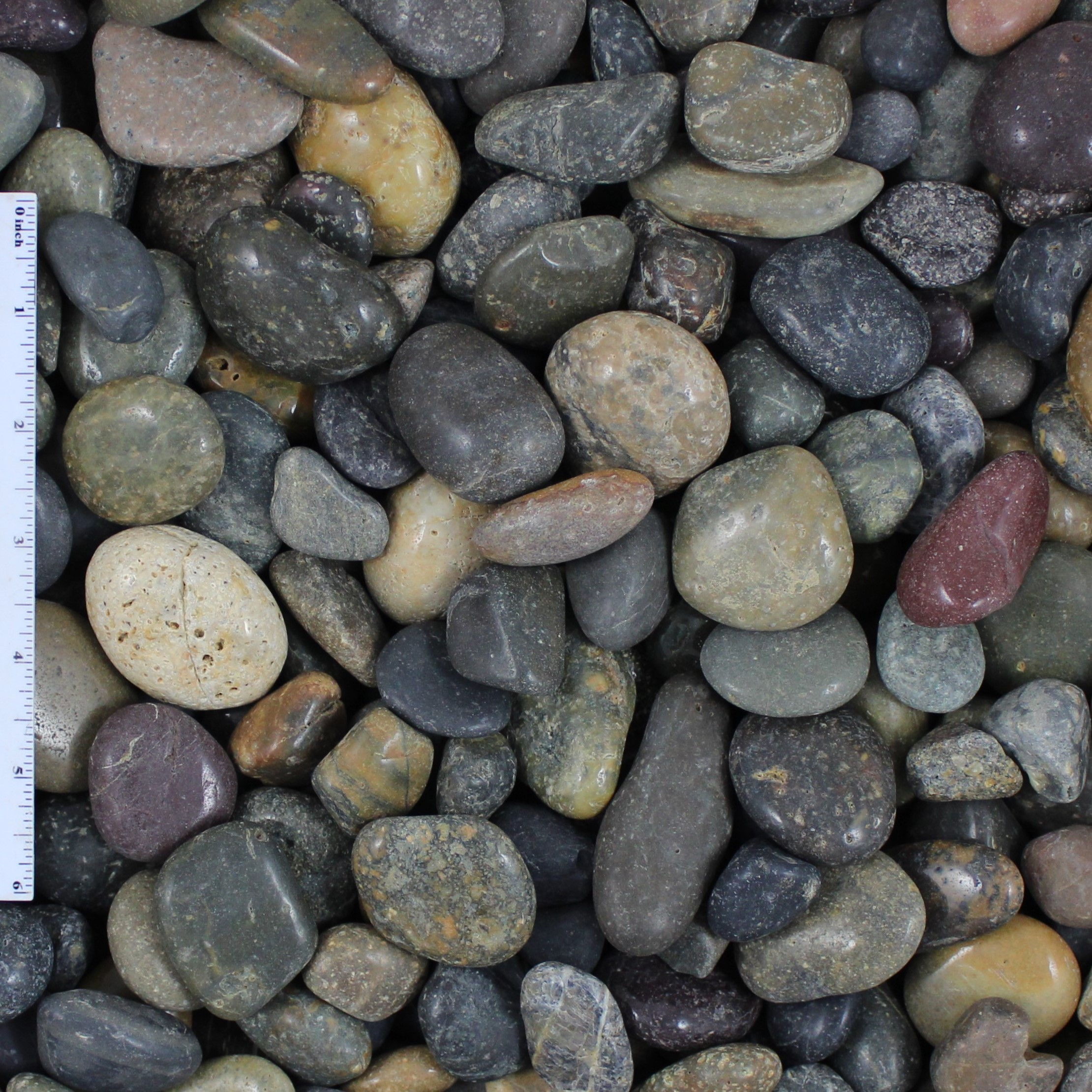 Polished Mixed Mexican Beach Pebbles
